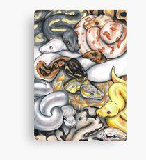 Pile O' Pythons Canvas Print