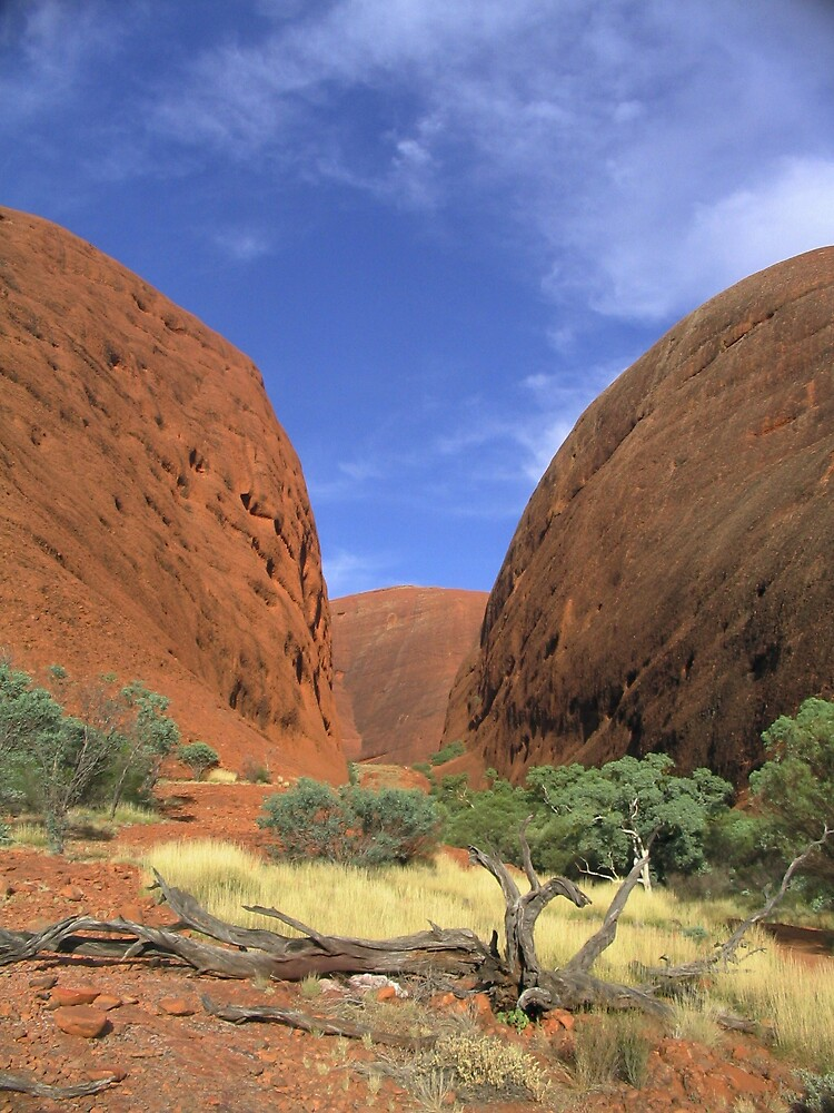 A walkabout around the Olgas  by jamesppbyrne