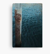 Bark & Water Canvas Print
