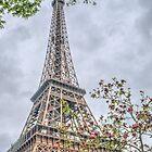 Beautiful Springtime Paris by Michael Matthews