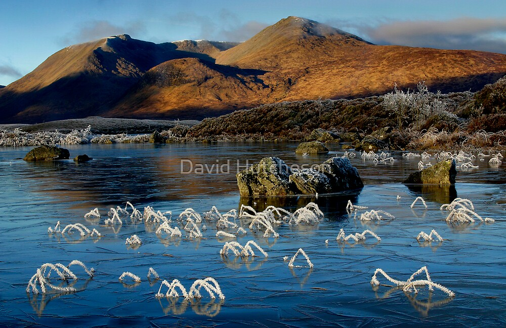 Frosted grasses 2  - Lochan na h-Achlaise by David Hutcheson