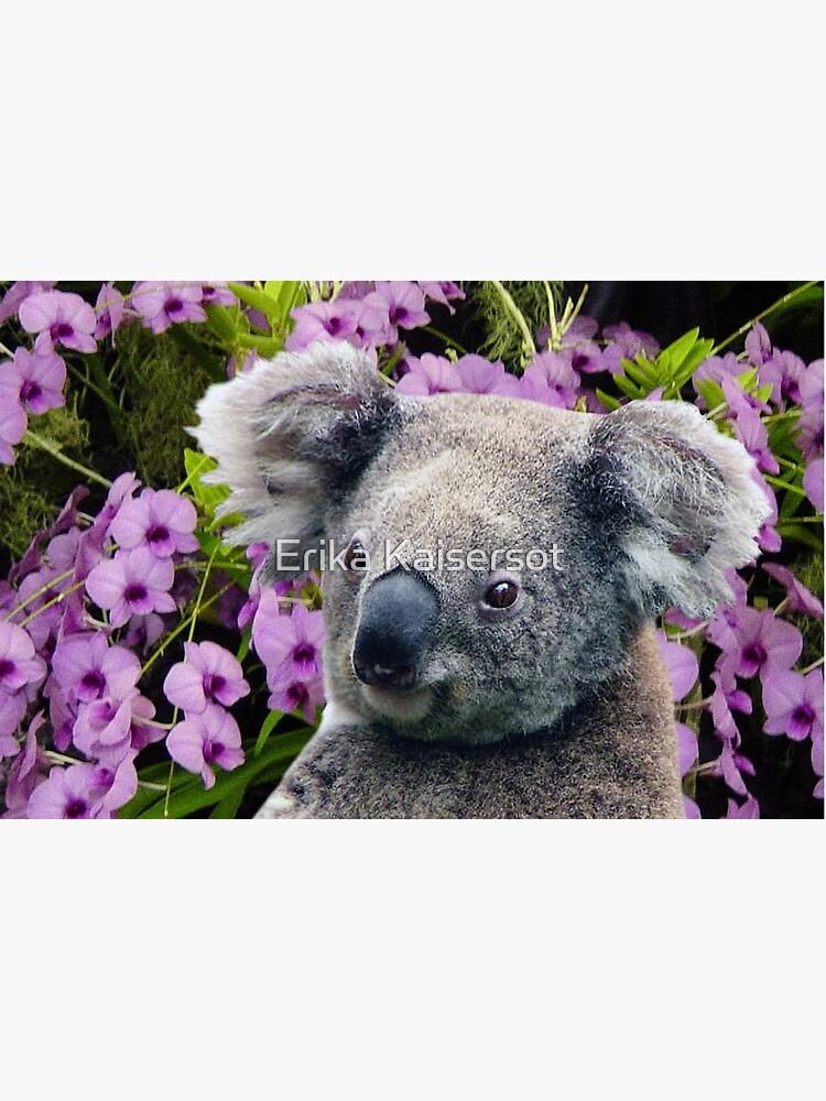 animales encantadores Australia de ErikaKaisersot
