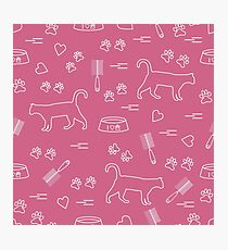 Nice pattern of silhouette walking cat, traces, hearts, bowl and comb need for cat hair. Photographic Print
