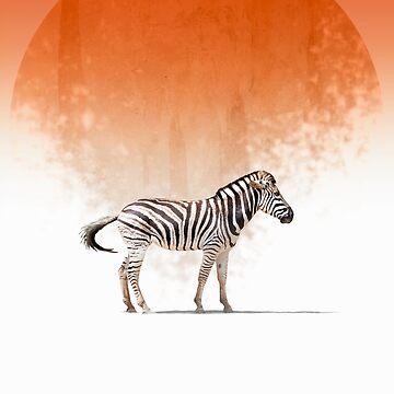 Zebra by GavinScott