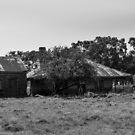Abandoned Farm Buildings by Colin  Ewington
