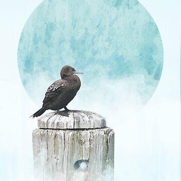 Cormorant by GavinScott
