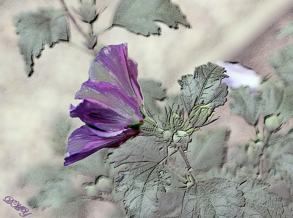 Clematus in Abstract by shadyuk