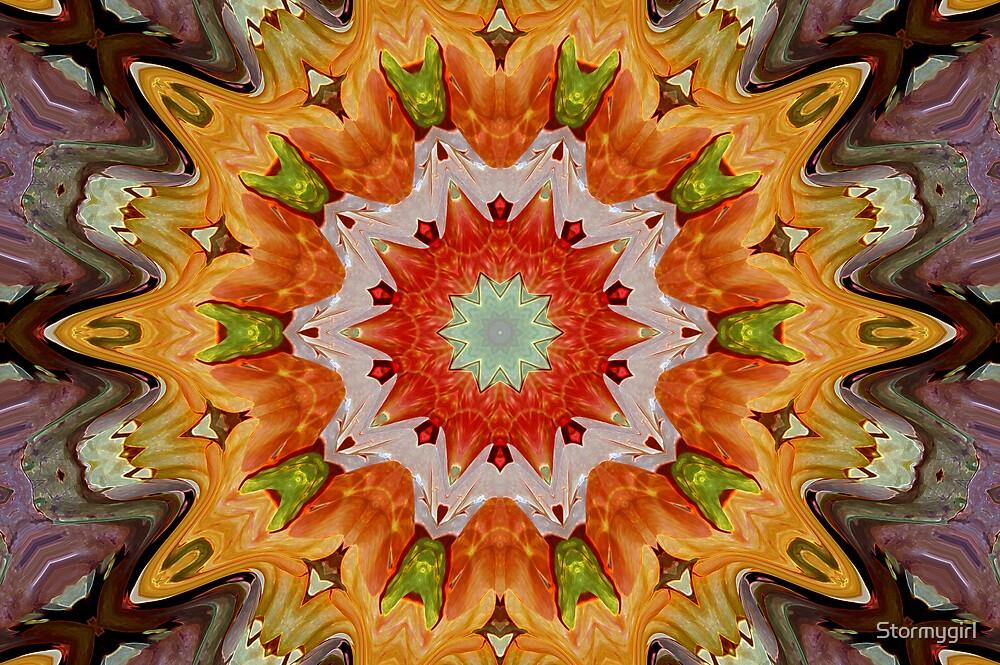 Orange Burst by Stormygirl