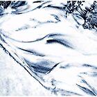 Sandverwehung ... Western Australia by Angelika  Vogel