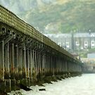 The barmouth bridge , wales . by Jon Baxter