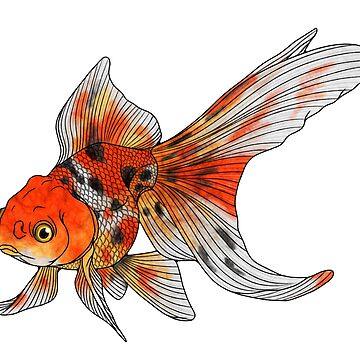 Calico Goldfish by Kanamey