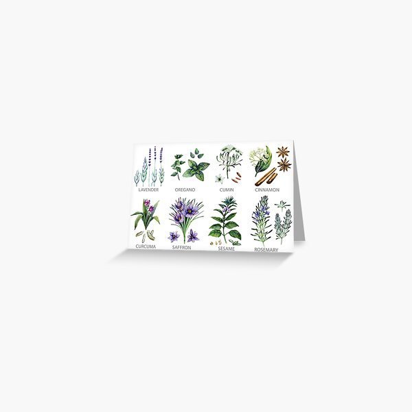 Watercolor botanical collection of herbs and spices Greeting Card