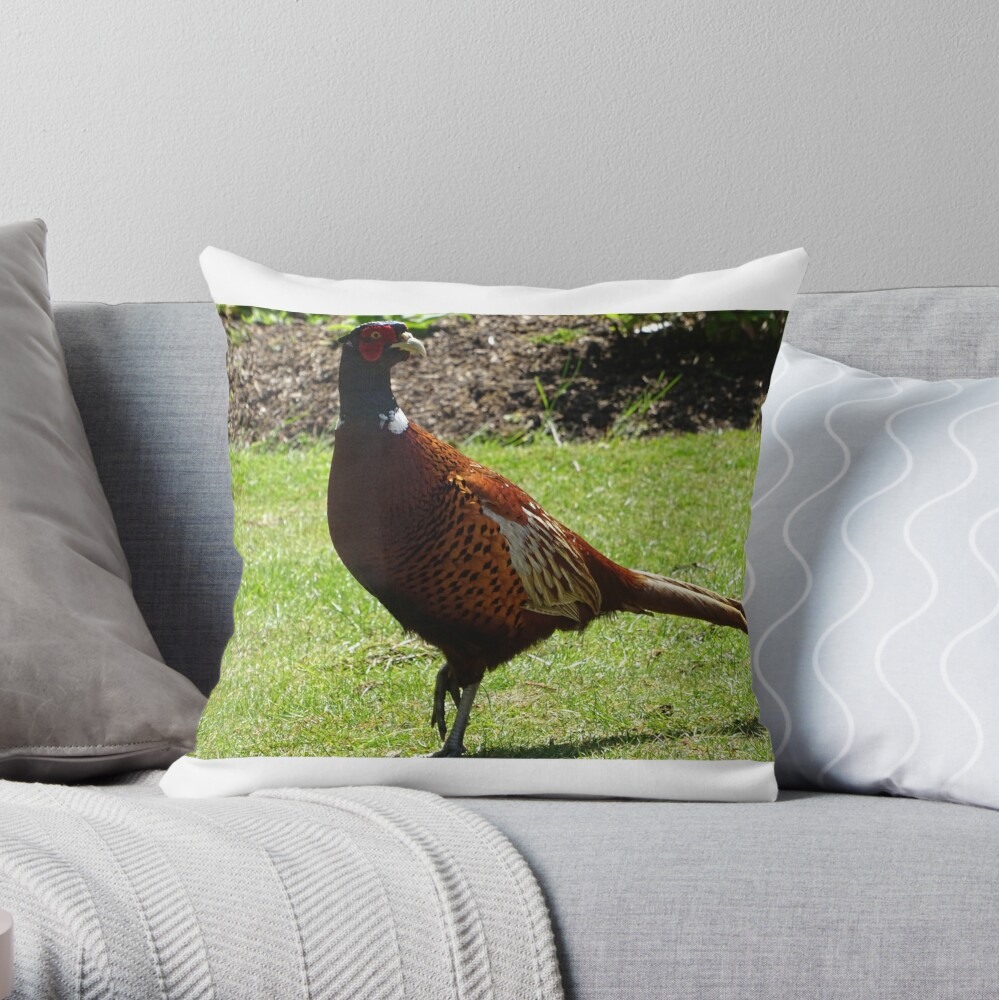 Male Pheasant Bird Throw Pillow