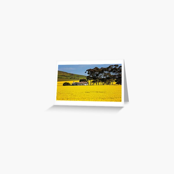 1732 Spring is here Greeting Card