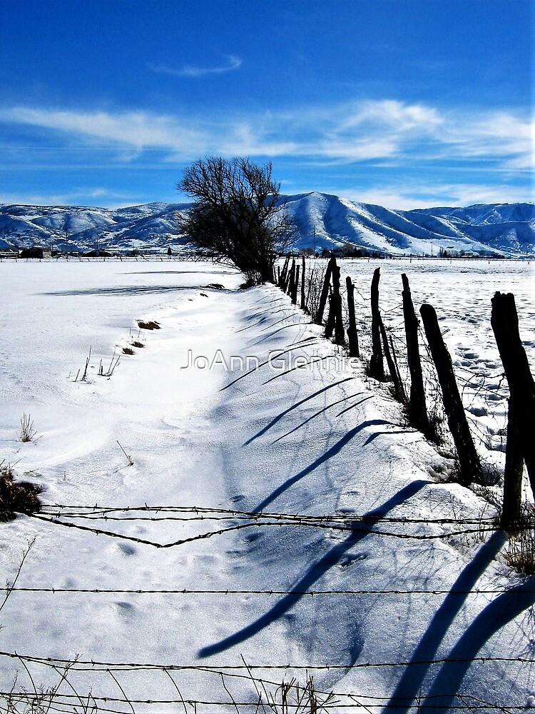 Old Fence by JoAnn Glennie