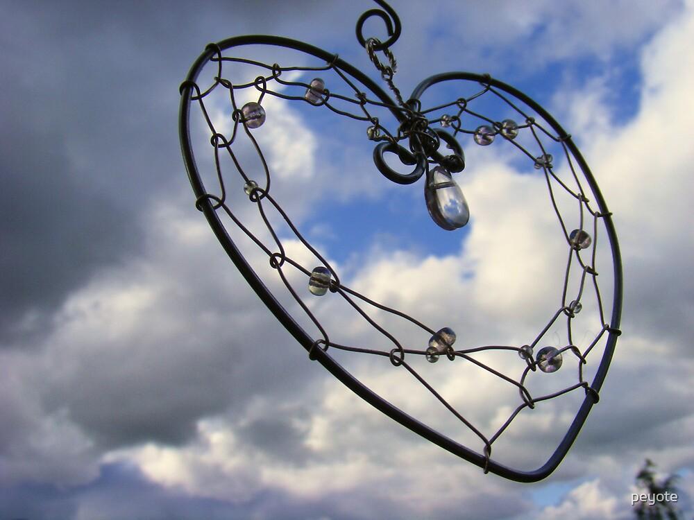 Heart Catcher by peyote