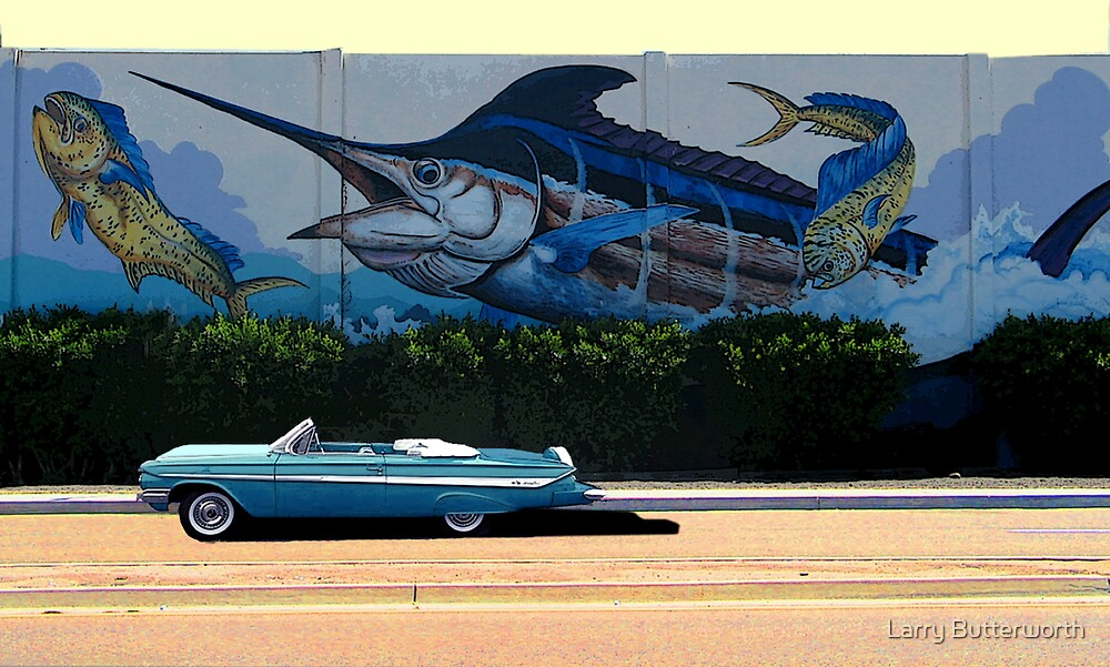 Chevy Impala by Larry Butterworth