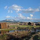 Corral in rural Colorado by Patrick Czaplewski