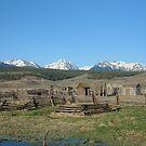 Rural Colorado Corral by Patrick Czaplewski