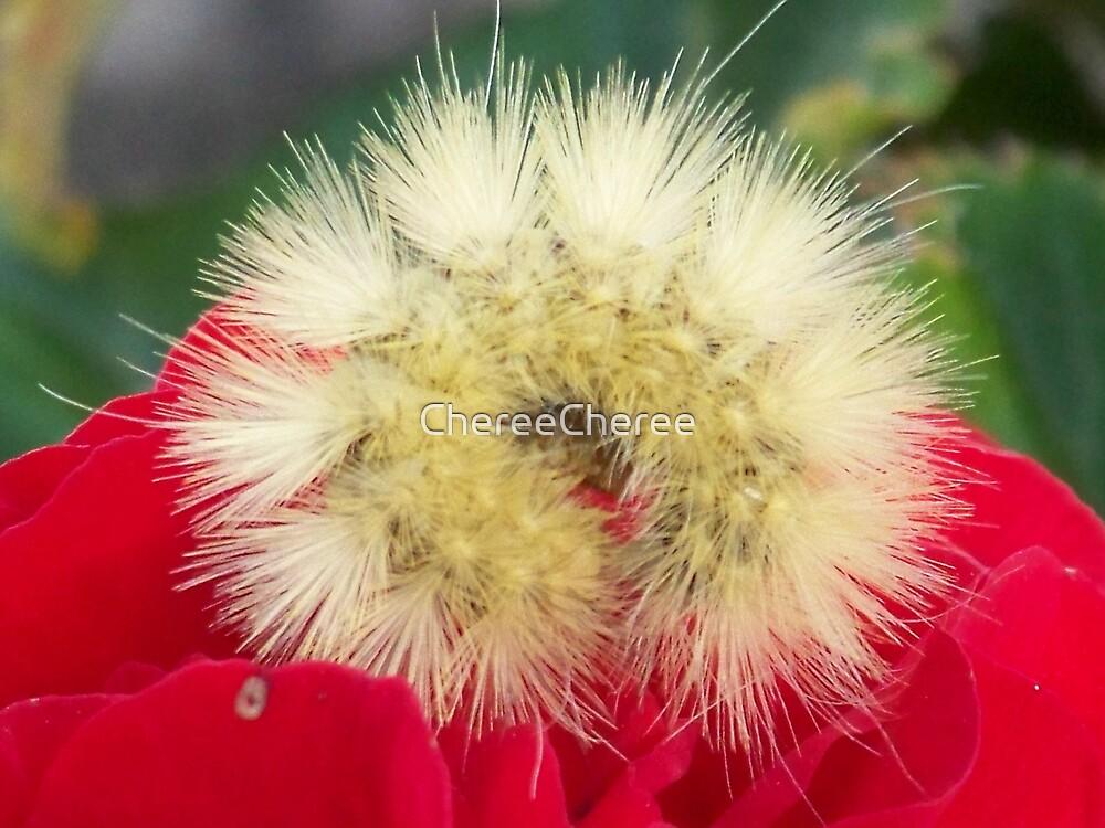 Yellow Caterpillar* by ChereeCheree