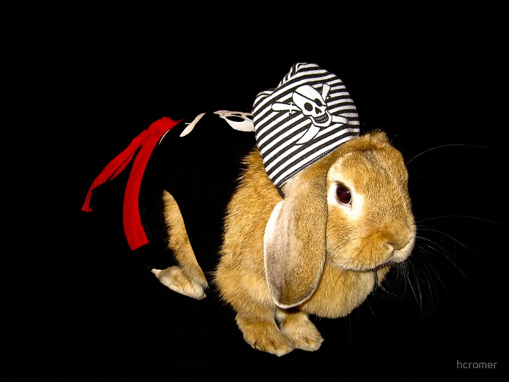 Charlotte the Pirate Bunny by hcromer
