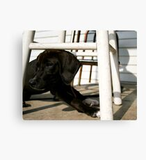 Mary Jane Canvas Print