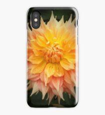 Beautiful Orange Dahlia Macro iPhone Case/Skin