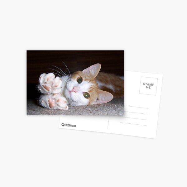 """Pebbles""  Postcard"