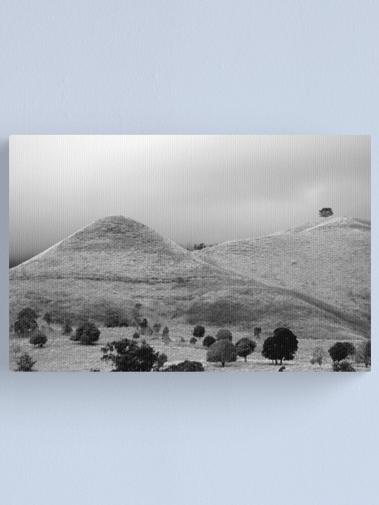 Alternate view of The Tree on the Hill Canvas Print