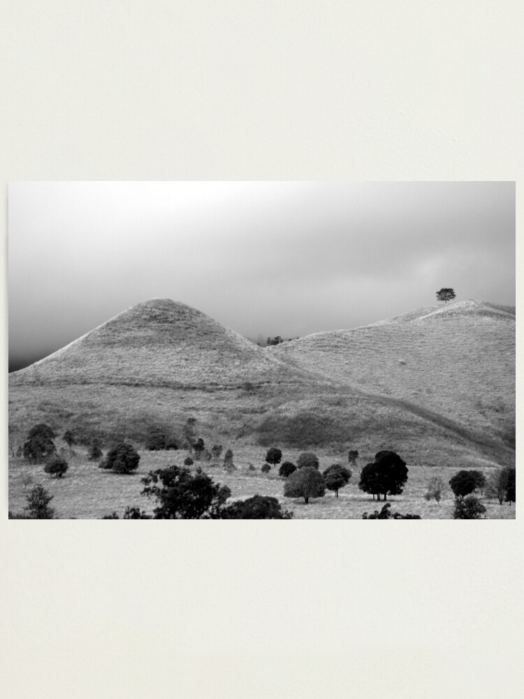 Alternate view of The Tree on the Hill Photographic Print