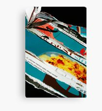 destructive read Canvas Print