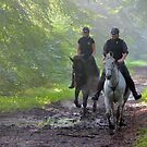 Riding out on a September morning by jchanders