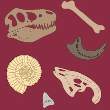 Dino Fossils by deliinthesky