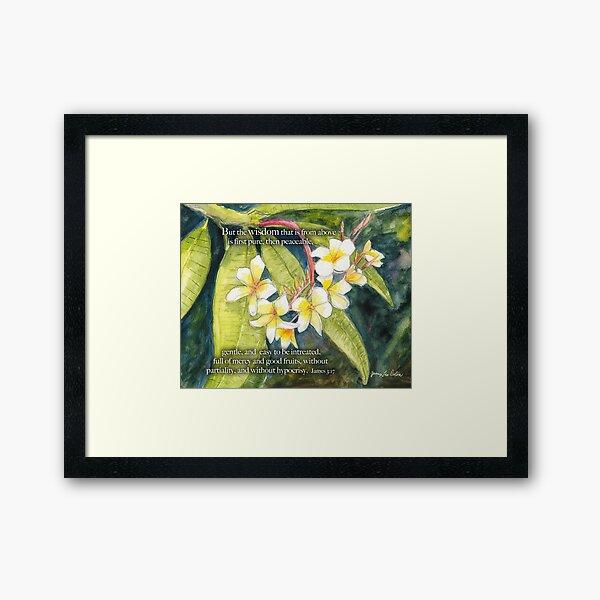Plumeria-James 3:17 Framed Art Print