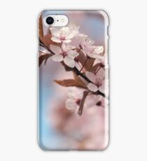 Almond Blossom iPhone Case/Skin