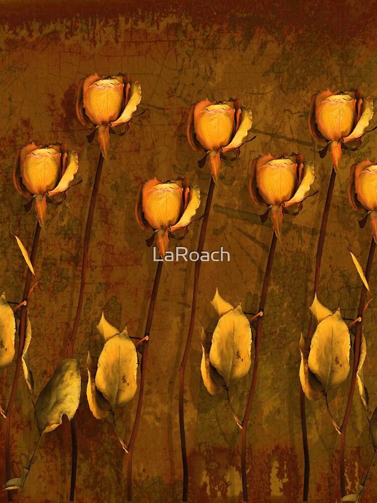 Rose Memories by LaRoach