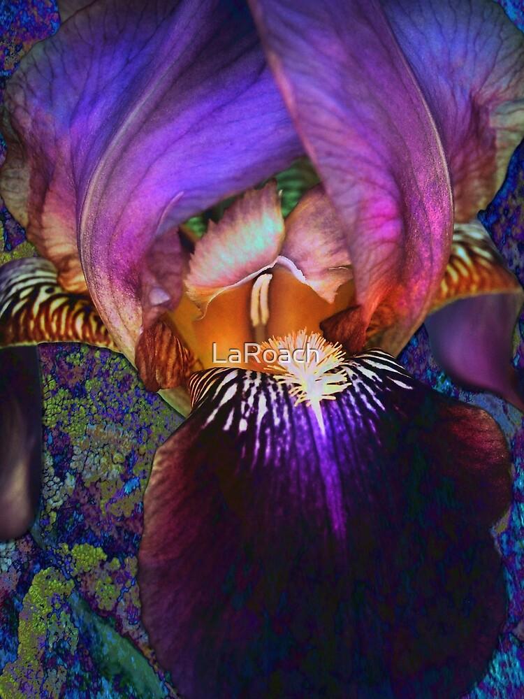 Purple Iris on Moss by LaRoach