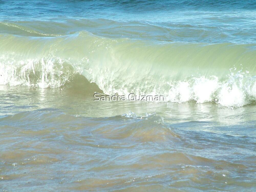 Wave 2 by Sandra Guzman