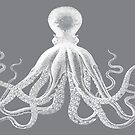 Octopus   Vintage Octopus   Tentacles   Sea Creatures   Nautical   Ocean   Sea   Beach   Grey and White    by EclecticAtHeART