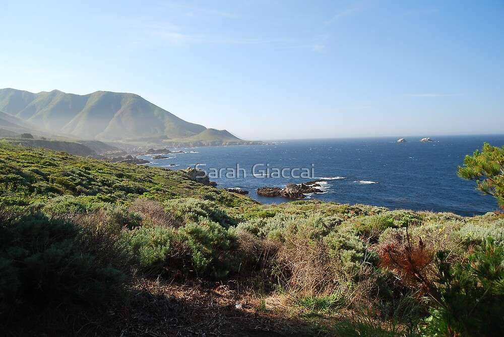 Pacific Coast Highway by Sarah Giaccai