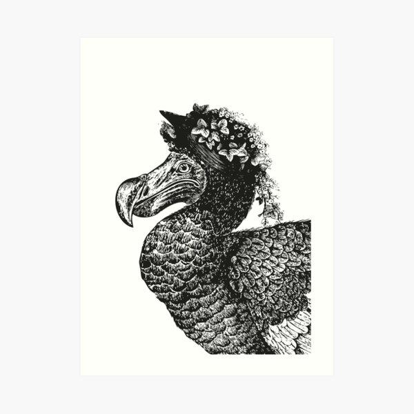 Mrs Dodo | Vintage Dodos | Black and White |  Art Print