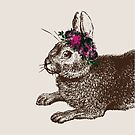 The Rabbit and Roses   Rabbit and Flowers   Vintage Rabbits   Bunny Rabbits   Bunnies   Hares    by EclecticAtHeART