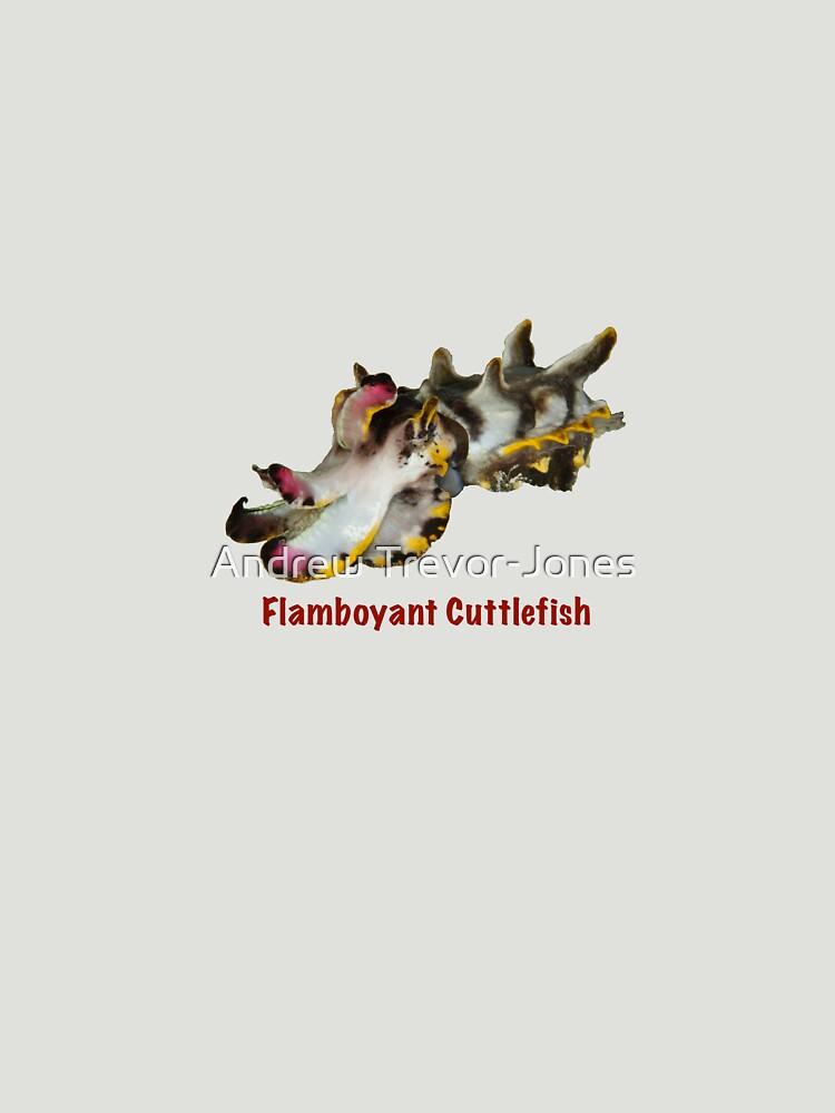 Flamboyant Cuttlefish by andrewtj