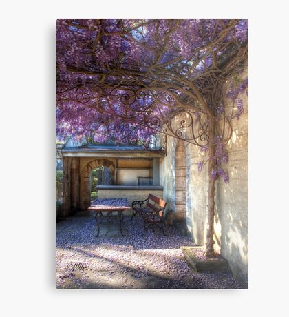 Under the wisteria Metal Print