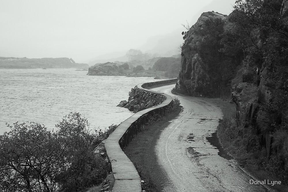 Gap Of Dunloe by Donal Lyne