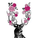 The Stag and Roses   Deer and Roses   Stag and Flowers   Deer and Flowers   Vintage Stag   Antlers   Woodland   Highland   Pink    by EclecticAtHeART