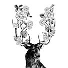 The Stag and Roses   Deer and Roses   Stag and Flowers   Deer and Flowers   Vintage Stag   Antlers   Woodland   Highland   Black and White    by EclecticAtHeART