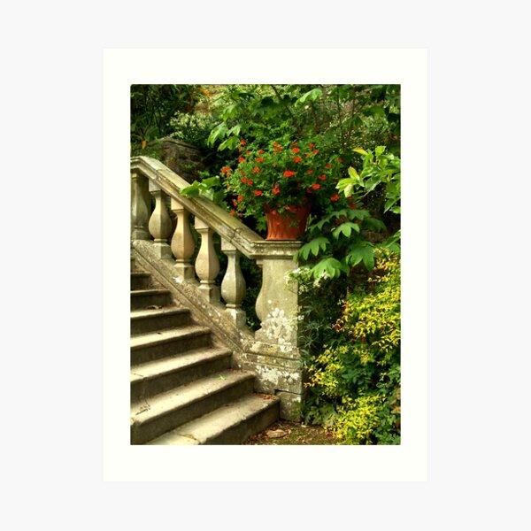 Steps to Heaven Art Print