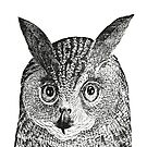 Owl   Vintage Owls   Black and White   by EclecticAtHeART
