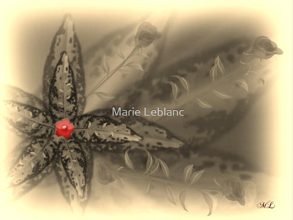 LOVE FLOWERS by Marie Leblanc